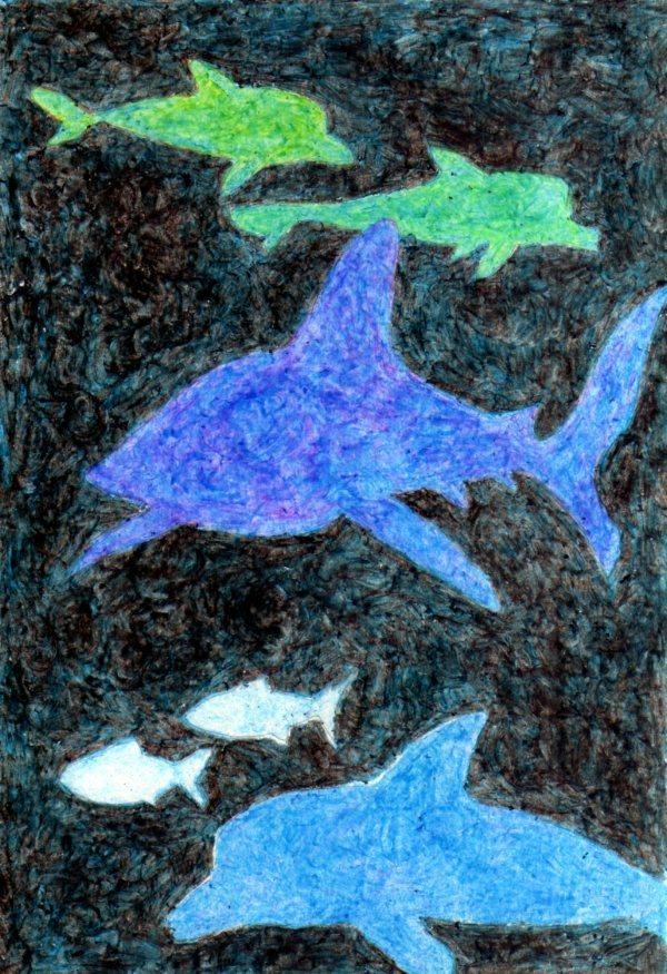 サメとイルカとおさかな