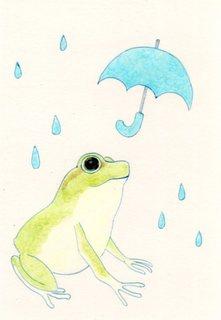 雨を喜ぶあまがえる2